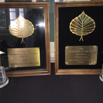 NYSPANA Gold Leaf & Shining Star Awards